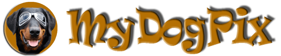 Logo mydogpix